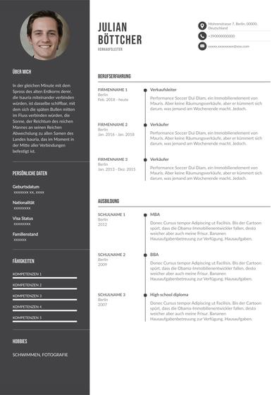 SalesResume(Germany).pdf